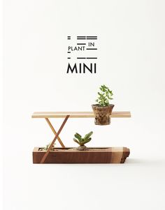 Plant-in Mini by Plant-in City, available at HomeMade NYC.   #plantterrariums #houseplants #huybui #plantincity #plantinmini #succulents #cacti