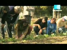 Curso de huerta Orgánica - 4 (La siembra 2da parte) 2 - YouTube Compost, Gardens, Harvest, Pest Control, Vertical Vegetable Gardens, Composters