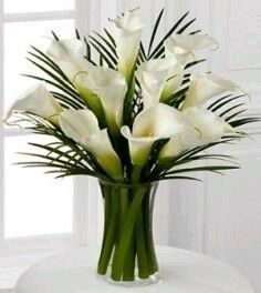 Endless Elegance Calla Lily Bouquet - 10 Stems - FTD This was my wedding flower . - Endless Elegance Calla Lily Bouquet – 10 Stems – FTD This was my wedding flower :] - Church Flowers, Fresh Flowers, White Flowers, Beautiful Flowers, Purple Flowers, White Tulips, Exotic Flowers, Yellow Flowers, Spring Flowers