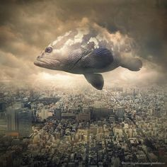 Fish floating above the city.  Creative digital artwork by Even Liu.