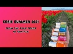 Searching for the perfect bright polish to add a pop of color to your nails? The Essie Summer 2021 Collection is a must have!!! Tulip Fields, Essie, You Nailed It, Color Pop, The Creator, Ads, Summer, Collection, Summer Time