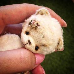 Всем привет 👋 #rose #bearteddy #bear #teddybear #новыймишка #миник #минимишка #миниатюра #мишка #мишутка #мишенька #тедди #теддик #теддимир #теддимишки #вышивка #вышиваю #вышитыймишка #вышивкамишка #роккоко #розы #розочкирококо #teddy #bear #bearteddy