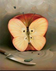 Maçã ou borboleta? Surrealismo
