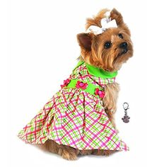 Bright Plaid Charmed Lady Bug Party Harness Dress-Dog Sizes XS thru L *** Find out more about the great product at the image link. (This is an affiliate link and I receive a commission for the sales)