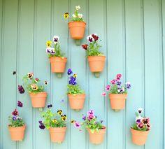 vasinhos-jardim-em-casa (1)
