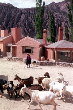 la comarca hotel purmamarca argentinie - Google zoeken