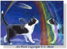 Tuxedo Angel Cat Gold Wings Rainbow Reflection Comet ACEO Original Art CMOAR