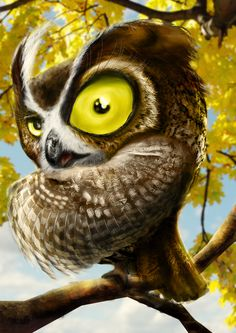 crazy owl by ~wex4u on deviantART