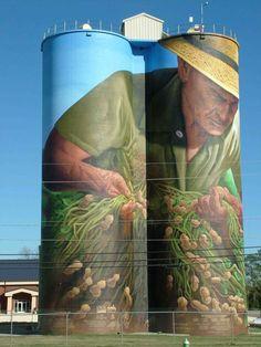 Birdsong Peanut Company Silos in Colquitt, Ga. Murals Street Art, 3d Street Art, Amazing Street Art, Street Art Graffiti, Street Artists, Amazing Art, Banksy, Art Du Monde, Barn Art