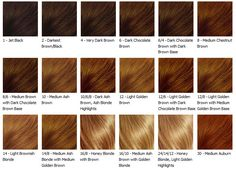 Hair Color Chart Loving the Medium Chesnut Brown and 2 - Darkest Brown/Black