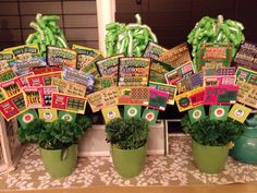 Lottery Ticket Bouquet made with dollar Tree Items. Pot, foam, carnations, garland, bows$5.  Taped tickets to Bamboo skewers. Wah Lah!  A Saint Patty's Door Prize. Total cost: $30!