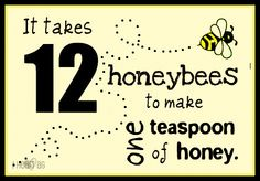 And their whole life (several months)- Don't treat honey like a tsp of sugar. It is probiotic, vitamins, minerals, anti fungal, and essences we have yet to identify.