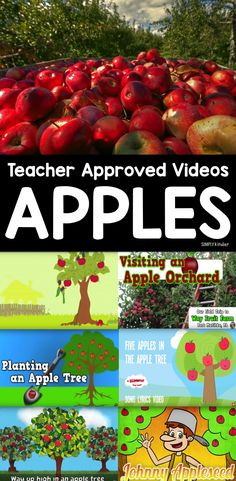 It does not really feel like Fall unit you have taught apple week in your classroom. Apples are such a fun topic because it really is the first time for the school year you get to do a fun thematic