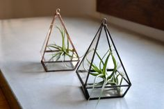 Geometric Terrarium Reclaimed Glass, Small