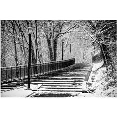 Wall Art, Brooklyn, New York, Snow, Street Scenes, Park, Black and... ($15) ❤ liked on Polyvore featuring home, home decor, wall art, backgrounds, wall street framed art, black and white home accessories, ny wall art, framed wall art and photography wall art