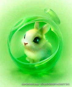 Rabbit (Drawing by Shuichi.Mizoguchi.9 @Facebook)