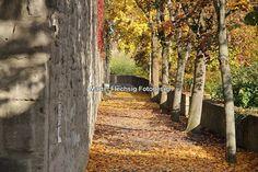 Stadtmauer von Bad Neustadt im Herbst   #badneustadt #saale #architektur #photographie