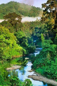 River in lowland rainforest, Danum Valley, Sabah, Borneo.