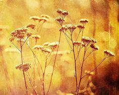#016 autumnal by Zuzanna on Etsy