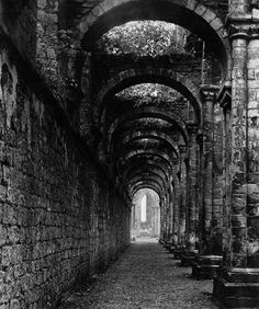Fountains Abbey by Bill Brandt, 1946