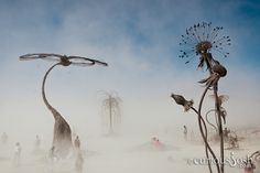 A favorite CuriousJosh photo from Burning Man 2010