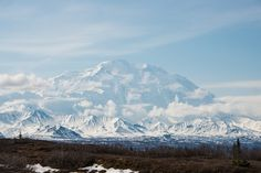 12 images that prove Denali National Park should be at the top of your bucket list - Matador Network