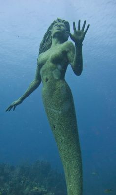 Amphitrite is the name of this 9 feet tall, 600-pound bronze mermaid statue by Simon Morris, placed in fifty feet of water off the beach at Sunset House on Grand Cayman Island in October 2000