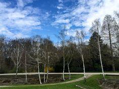 Alte Radrennbahn im Hoeschpark, Dortmund
