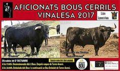 torodigital: VINALESA AFICIONATS BOUS CERRILS 2017 (VALENCIA)
