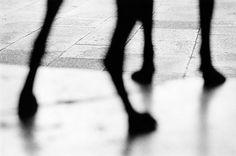 photo by Renato D'Agostin