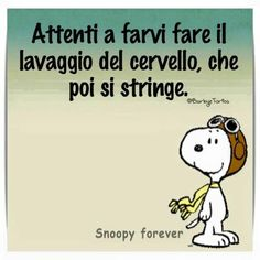 Italian Quotes, Charlie Brown Peanuts, Sarcastic Quotes, Woodstock, Vignettes, Have Fun, Wisdom, Thoughts, Humor