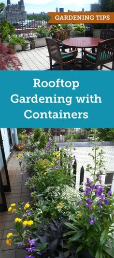 Rooftop gardening has its own set of challenges. Learn about watering the best s… - Rooftop Garden