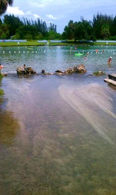 Florida& Warm Mineral Springs Could Be The Fountain of Youth Road Trip Florida, Florida Vacation Spots, Places In Florida, Florida Travel, Vacation Places, Florida Beaches, Vacation Trips, Day Trips, Travel Usa