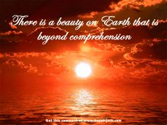 God's creations wallpaper   About-God-s-creations-god-the-creator-16655170-550-413.gif