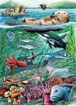 Show details for Life on the Pacific Ocean 35 Piece Tray Puzzle Colorful Fish, Tropical Fish, Hawaiian Monk Seal, Shoal Of Fish, Ocean Habitat, Ocean Turtle, Oceans 11, Pets For Sale, Ocean Colors