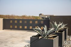We love seeing all of our client's designs come to life. However, an architect or designer's vision cannot be realized without first having a plan. Commercial Planters, Modern Outdoor Living, Cad Software, Modern Planters, You Draw, Landscape Architecture, Outdoor Spaces, Planter Pots, Backyard