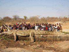 africa   Unbelievable