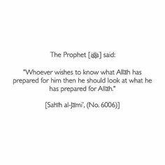 SalAllahu alejhi we selem Islam Hadith, Allah Islam, Islam Quran, Alhamdulillah, What Is Islam, Love In Islam, Prophet Quotes, Quran Quotes, Muslim Quotes