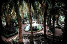 Jardín de las Palmeras, en el Carmen de los Mártires. (vía flickr)