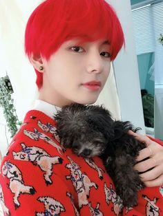 Jungkook is a bunny with an attitude. Can 'pet whisperer' Taehyung ta… Fanfiction Bts Taehyung, Taehyung Red Hair, Kim Namjoon, Bts Bangtan Boy, Bts Boys, Seokjin, Hoseok, Yoongi Bts, Foto Bts