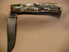 Stag handle Scrimshaw pocket knife.