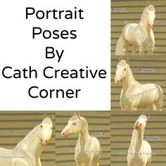 cathcreativecorner:  5 HORSE PORTRAIT POSES BY CATH CREATIVE CORNER :)DO NOT TAKE CREDIT FOR MY WORK!!!!I made these because I saw many needing them, and voila! Here they are! Use them in your game :) do not re upload, but reblog, reblog :) ! Love you guys! (You can also take body shots of the horses, the bodies are made too!) GO TO DOWNLOAD
