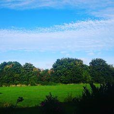 #autumn #autumnal #worcester #wonderful