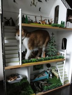 16 Cats Hanging Out in Dollhouses Like They Own It (16 Pics ...