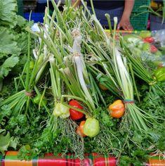 Bouquet garni - Guyane Healthy Low Carb Recipes, Keto Recipes, Cooking Recipes, Bouquet Garni, Xmas Food, Foie Gras, Food Trends, Summer Of Love, Vinaigrette