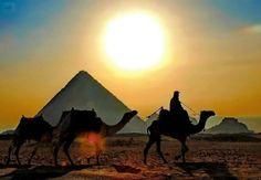 Pyramids Giza , Egypt.