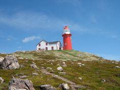 The Lighthouse   Lighthouse Picnics   Ferryland, Newfoundland Canada -- reserve very early!