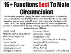 Circumcision , Boys are healthier when left in tact. Statistically and scientifically boys are less apt to receive infection when Not circumcised. Biblically Christians are not required to be circumcised any longer. Circumcision Facts, Routine, Just Say No, Natural Birth, Attachment Parenting, Index Cards, Midwifery, Doula, Baby Fever