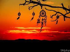 Dream catchers at sunset.