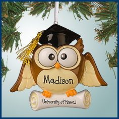 Personalized Christmas Ornaments - Graduate Owl with Diploma